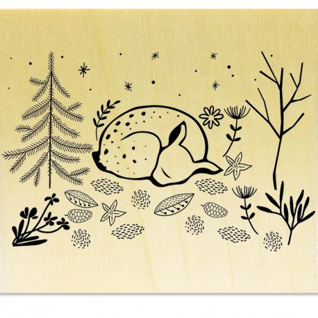 Scène Faon endormi dans la forêt