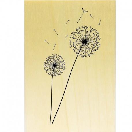 COLLECTION - COLLECTION - Enjoy Flowers - Fleurs de Pissenlit