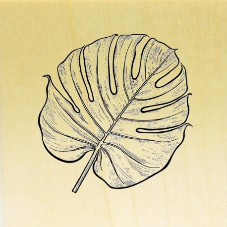 COLLECTION - COLLECTION - Enjoy Flowers - Feuille de Monstera