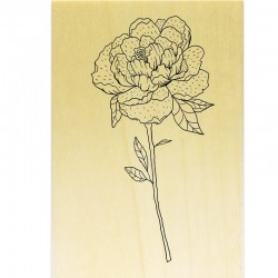 COLLECTION - Enjoy Flowers - Pivoine avec tige