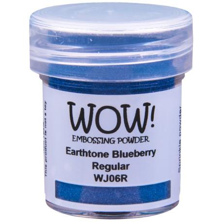 Embossing powder Ranger - Clear